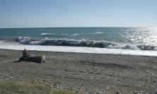 Волнение море в конце августа. Пляж Гумиста