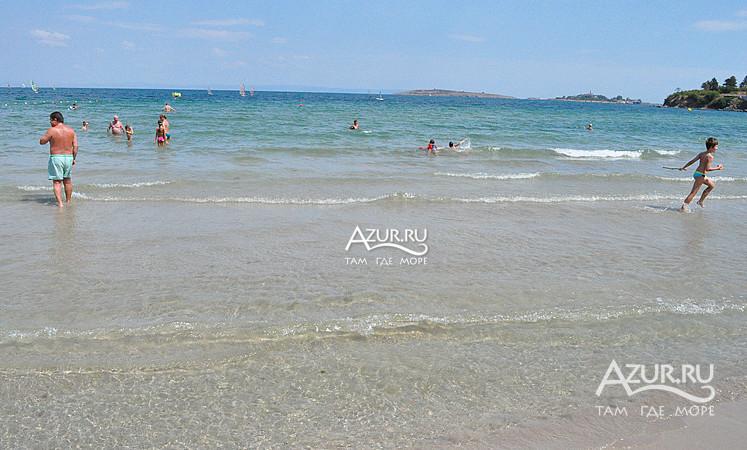 Gentlemen удивительно созополь пляж золотая рыбка цветочные